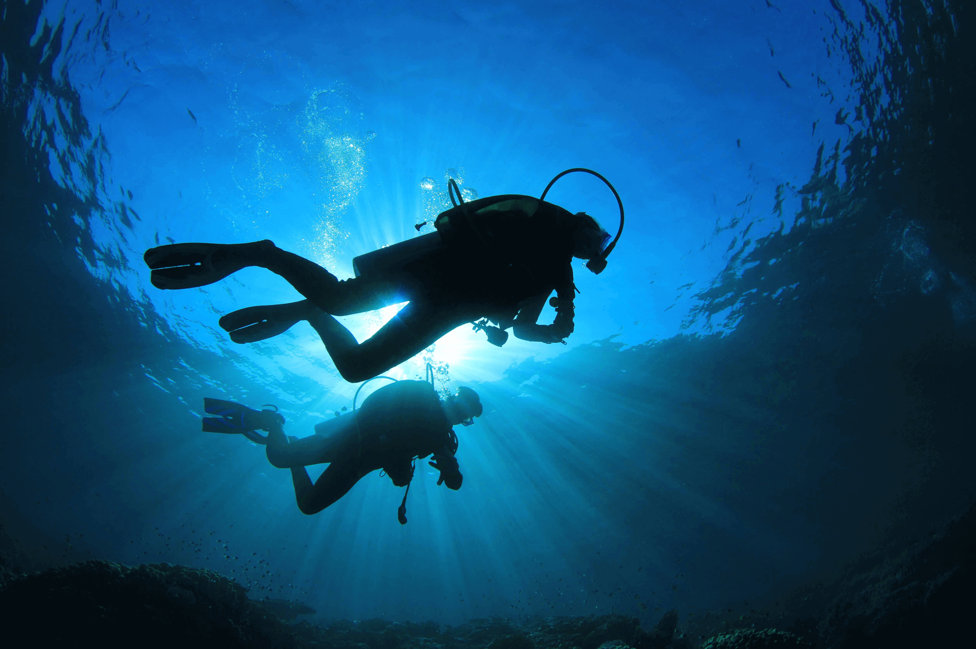 STAFFVIRTUAL_Home_Page_Cover_Photo_Diver (1) (1)