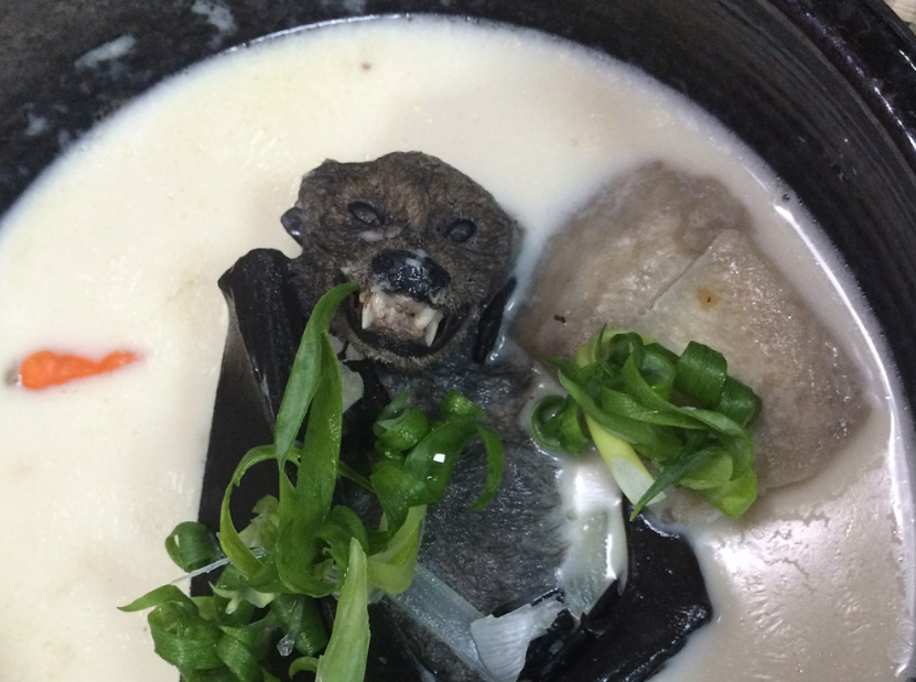 10 Exotic Filipino Foods You Have to See to Believe