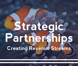Staff Virtual Strategic Partnership